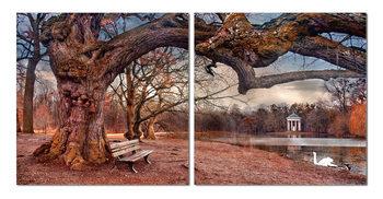 Obraz Procházka podzimním parkem