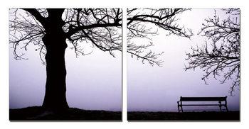 Obraz  Sychravé ráno v parku