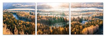 Obraz Západ slunce nad lesy