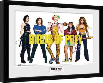 Zarámovaný plakát Birds Of Prey: Podivuhodná proměna Harley Quinn - Group