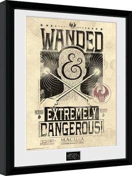 Zarámovaný plakát Fantastická zvířata a kde je najít - Wanded