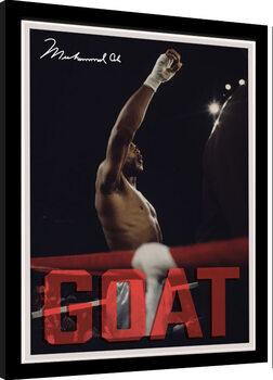 Oprawiony plakat Muhammad Ali - GOAT