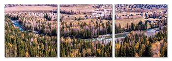 Obraz Zátoka v lesích
