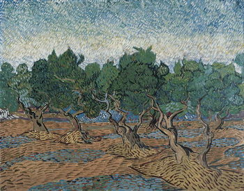 Εκτύπωση έργου τέχνης  Olive Grove, 1889