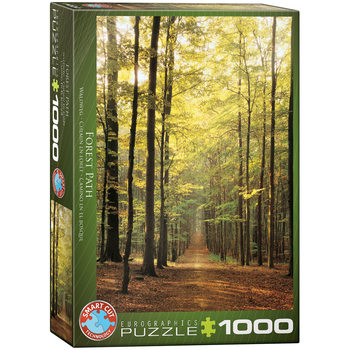 Puzzle Forest Path