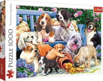 Puzzle Psy v záhrade