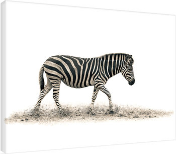 Mario Moreno - The Zebra På lærred
