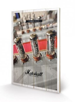 MARSHALL - the kings of england Panneau en bois
