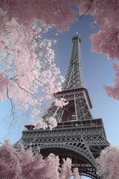 Paris - Eiffel Tower, David Clapp - плакат (poster)