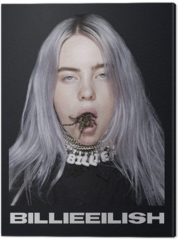 Cuadros en Lienzo Billie Eilish - Spider