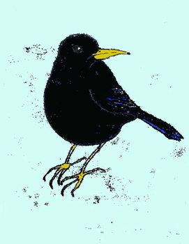 Cuadros en Lienzo Blackbird,2008