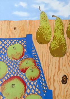 Cuadros en Lienzo Blue basket of Apples, 2008,