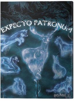Cuadros en Lienzo Harry Potter - Patronus
