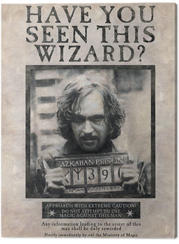 Cuadros en Lienzo Harry Potter - Wanted Sirius Black