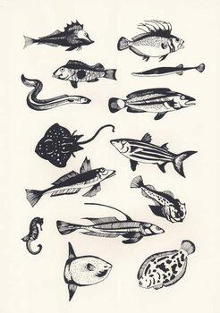 Cuadros en Lienzo Monotone Plain Fish, 2015