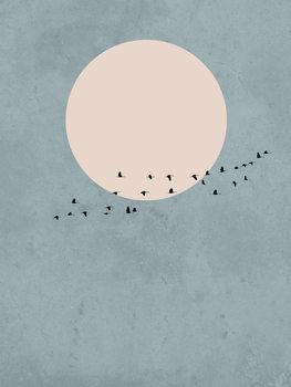Cuadros en Lienzo moonbird1