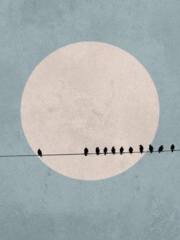 Cuadros en Lienzo moonbird3