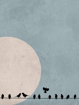 Cuadros en Lienzo moonbird4