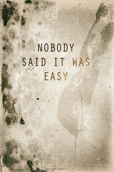 Cuadros en Lienzo Nobody said it was easy