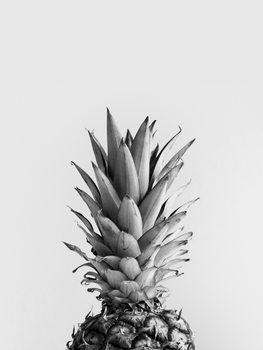 Cuadros en Lienzo pineappleblackandwhite