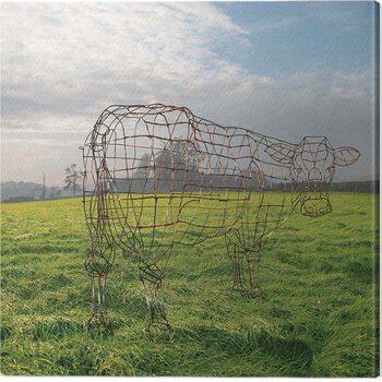 Cuadros en Lienzo Pink Floyd - Wireframe Cow