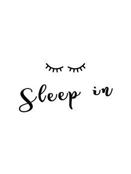 Cuadros en Lienzo Sleepin