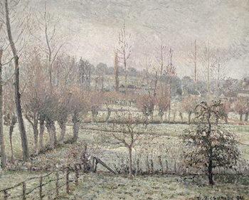 Cuadros en Lienzo Snow Effect at Eragny, 1894