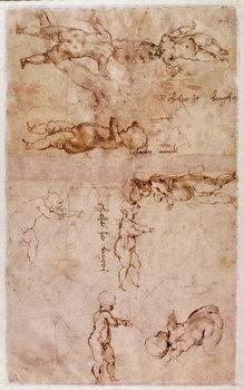 Cuadros en Lienzo W.4v Page of sketches of babies or cherubs