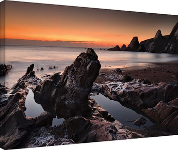 Cuadros en Lienzo  David Clapp - Westcombe Bay, Devon