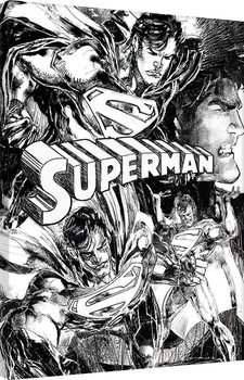 Pinturas sobre lienzo Superman - Sketch
