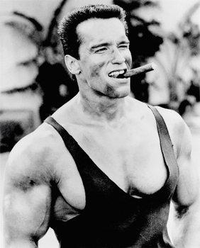 Plagát Arnold Schwarzenegger - Cigar