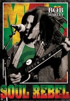 3D Plagát Bob Marley - Soul rebel 3D