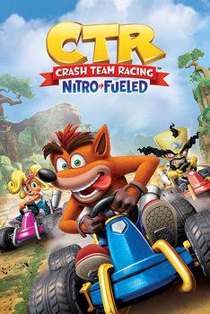Plagát Crash Team Racing - Race