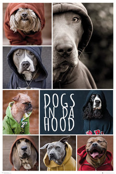 Plagát Dogs In Da Hood - Dogs