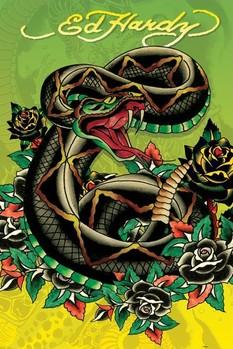 Plagát Ed Hardy - snake
