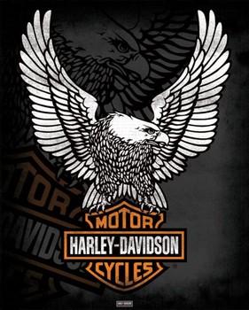 Plagát Harley Davidson - eagle