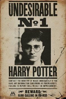 Plagát HARRY POTTER - undersirable n12