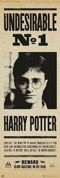 Plagát Harry Potter - Undersirable no. 1