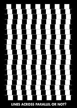 Plagát  Lines across parallel or nor?