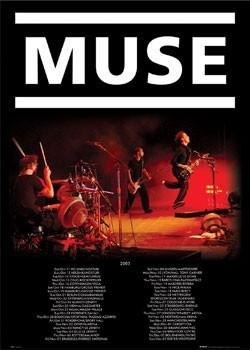 Plagát Muse - live