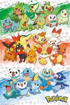 Plagát Pokemon - First Partners