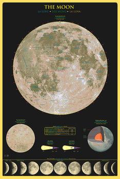 Plagát The moon