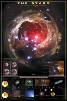 Plagát The stars