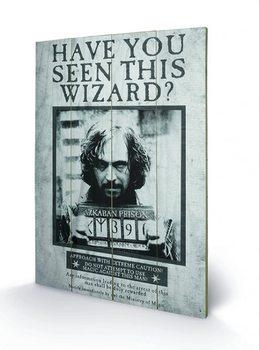 Harry Potter - Sirius Wanted plakát fatáblán