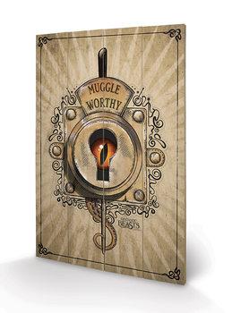 Legendás állatok és megfigyelésük - Muggle Worthy plakát fatáblán