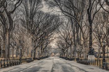 Assaf Frank - New York Central Park Plakater