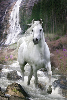 Bob Langrish - waterfall Plakat