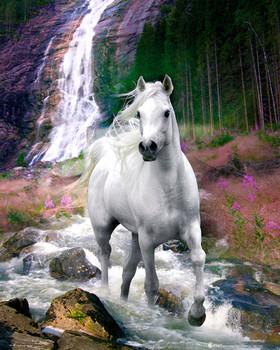 Bob Langrish - waterfall Plakat