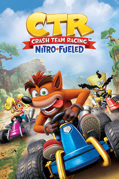 Crash Team Racing - Race Plakat
