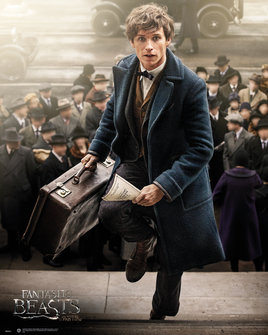 Fantastic Beasts And Where To Find Them - Newt Scamander Plakat